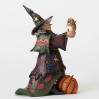 Jim Shore Heartwood Creek Hoot 'n Howl For Halloween Cute Witch with Owl 4053862